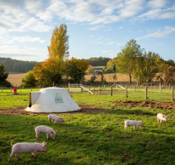 Fleury Michon et Vallégrain ont installé un élevage porcin bio à Théligny (72). Une filière bio française permettrait à l'industriel de sécuriser son sourcing et de développer ses gammes de charcuteries. Crédit photo : Fleury Michon