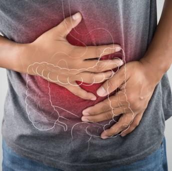 L'étude de l'institut Cochin montre que des émulsifiants comme le polysorbate 80 et la carboxyméthylcellulose renforcent l'inflammation intestinale en stimulant des bactéries pathogènes Escherichia coli adhérentes invasives, dites AIEC. Crédit photo Adobe Adiano