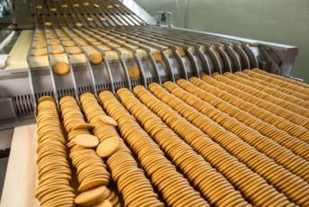 Biscuits cassés ou éjectés, chair de poisson non utilisée... les exemples de coproduits alimentaires pouvant être valorisés in situ grâce aux unités compactes installées par Upcyclink ne manquent pas..