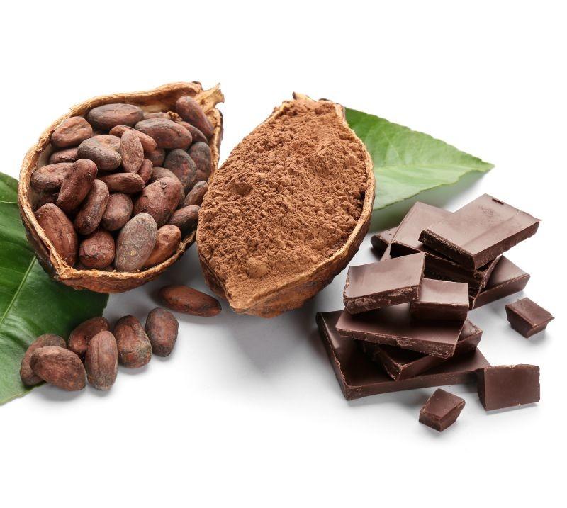 Grâce au projet Chaman, Valrhona,  l'Inra, l'Irstea et le Cirad  sont en mesure d'estimer le futur goût d'un chocolat en fonction de la composition des fèves de cacao. Certains polyphénols sont ainsi des marqueurs de «classes organoleptiques» du chocolat. Crédit photo Africa Studio