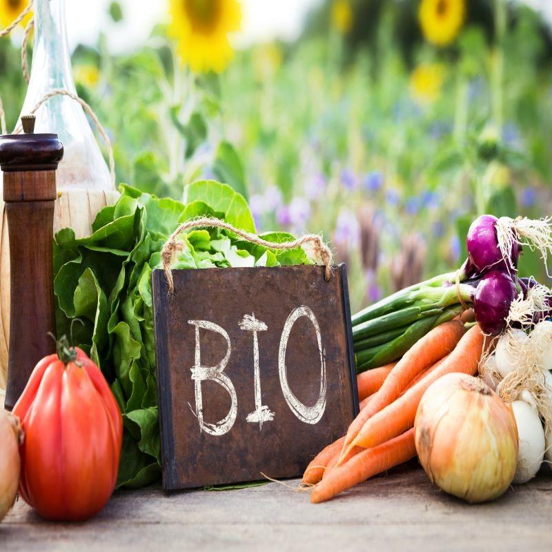 L'entrée en application du règlement européen n°2018/848, qui abroge le règlement 834/2007, est reportée à 2022. La Commission a également lancé une consultation publique sur son futur plan d'action pour l'agriculture biologique. Crédit : Adobe Stock.