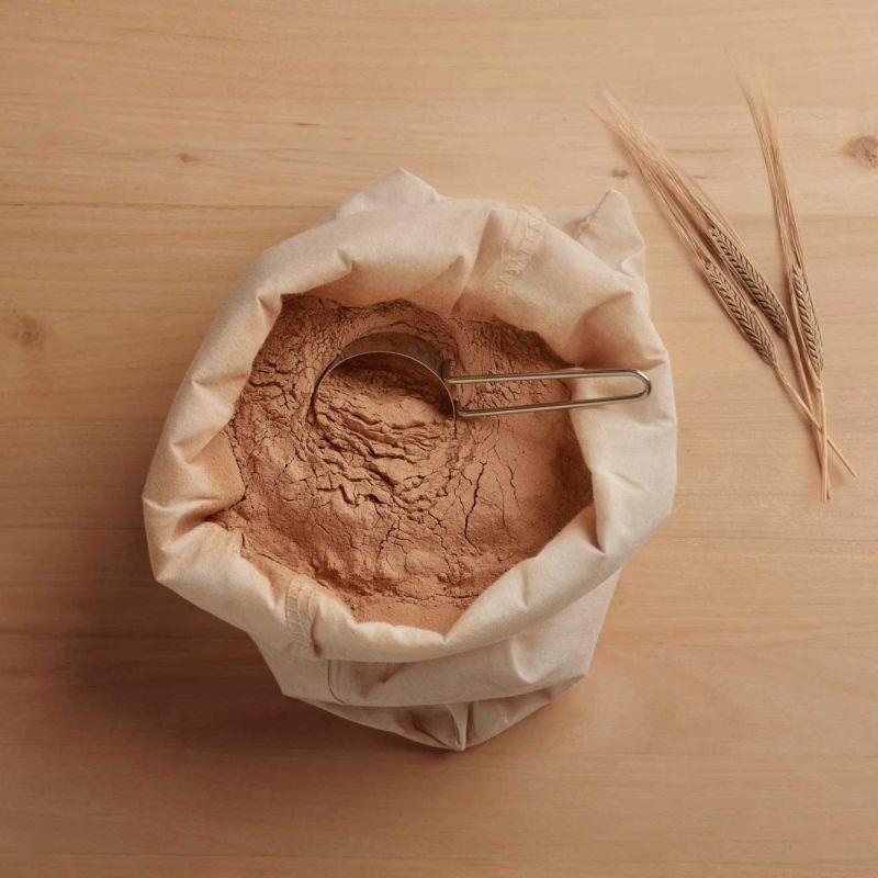 Evergrain extrait les protéines et les fibres des drêches de brasseries pour les revendre comme ingrédients nutritionnels. Crédit photo Evergrain