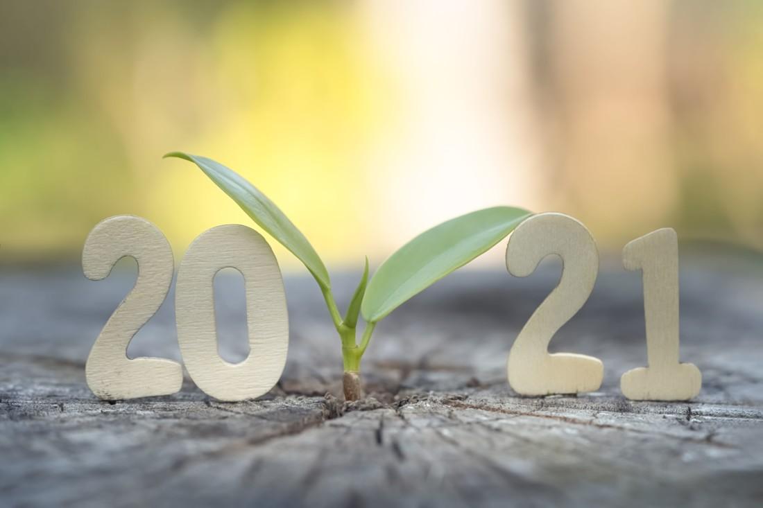 Après une année 2020 marquée par la pandémie, comment envisager l'année qui vient de débuter ? Nouveautés produits, salons, affichage environnemental, éco-conception des emballages, fluides frigorigènes, référentiels de sécurité des aliments, contaminants à surveiller, etc., le point sur les évolutions clefs qui vont concerner les industriels de l'agroalimentaire.