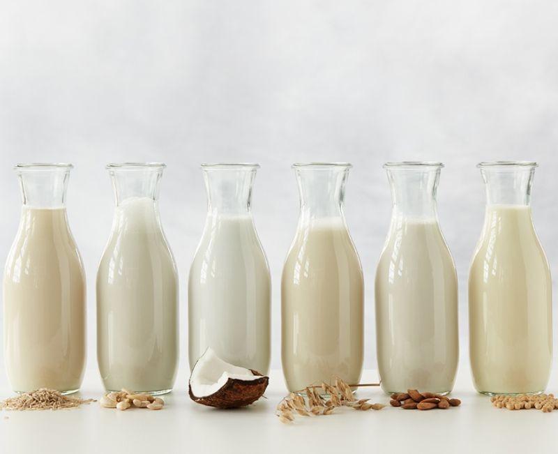 Pour accompagner le développement des produits végétaux fermentés, DuPont Nutrition & Biosciences lance Holdbac YM Vege, des cultures de biopréservation qui inhibent les levures et moisissures. Crédit photo DuPont Nutrition & Biosciences.