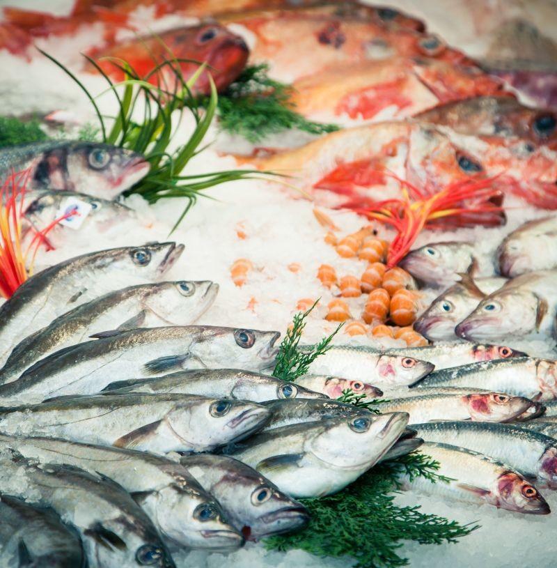 Avec la fermeture des frontières et la fermeture des restaurants et marchés, en 15 jours, le secteur de la pêche a perdu la moitié de ses débouchés. Il y a deux semaines, les cours du poisson se sont effondrés à cause de la surproduction. Crédit photo Adobe Christophe Fouquin